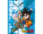 Plagát Dragon Ball Z Trunks and Goten